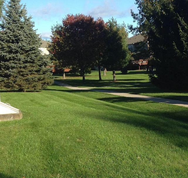 Why Your Lawn Fertilization Treatments Should Vary Depending on the Season in Poughkeepsie, NY