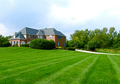 Lawn maintenance Pleasant Valley, New York