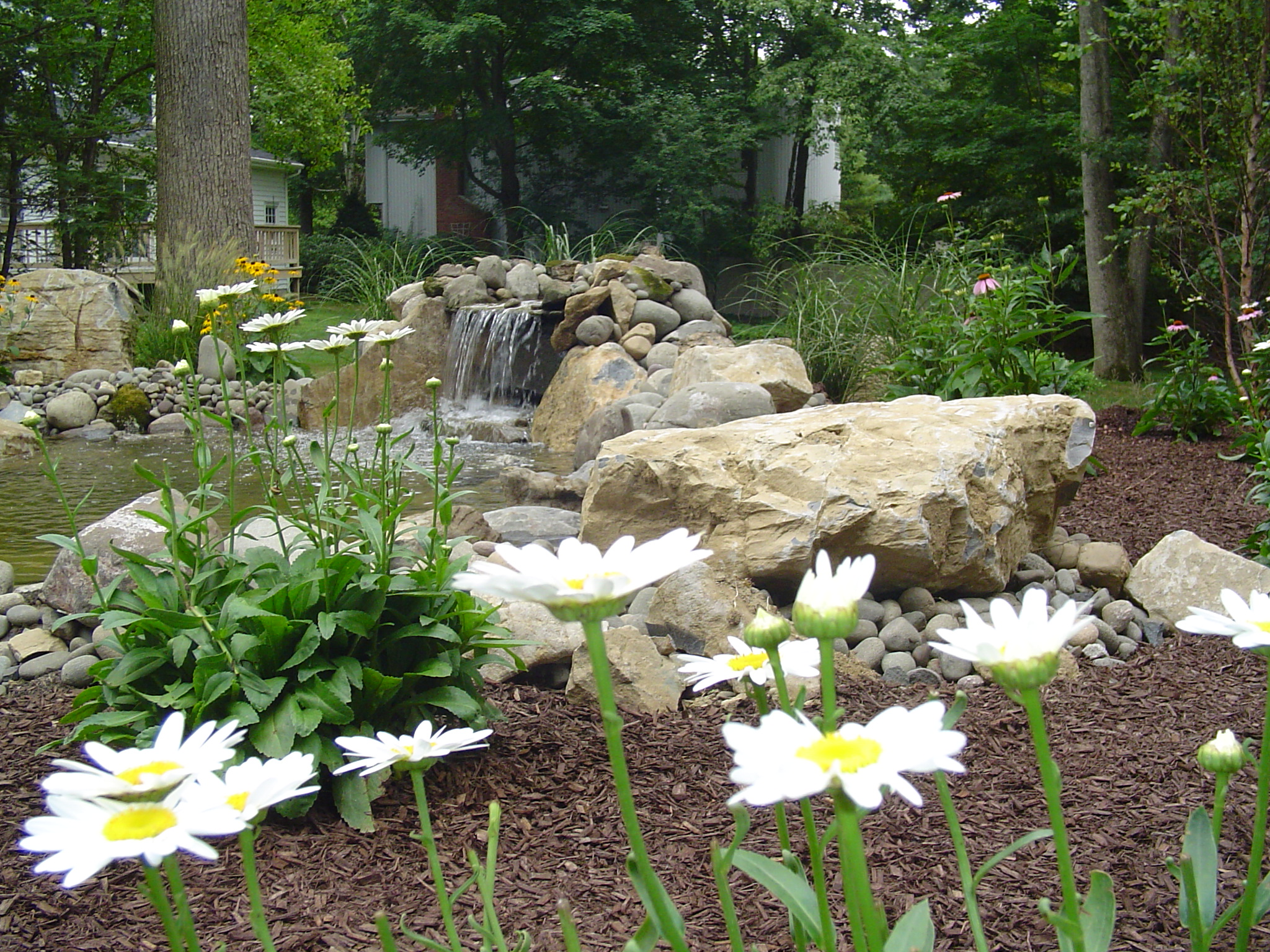 Lawn Maintenance and Fertilization Mistakes to Avoid in Your Pleasant Valley, NY, Area Home