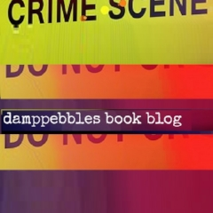 Book bloggers - Damp Pebbles - Lounge Books