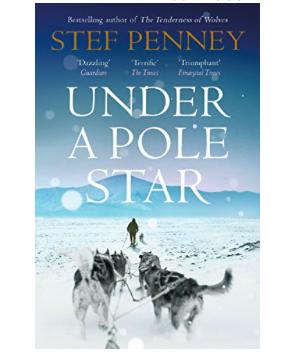 Under a Pole Star - Stef Penney