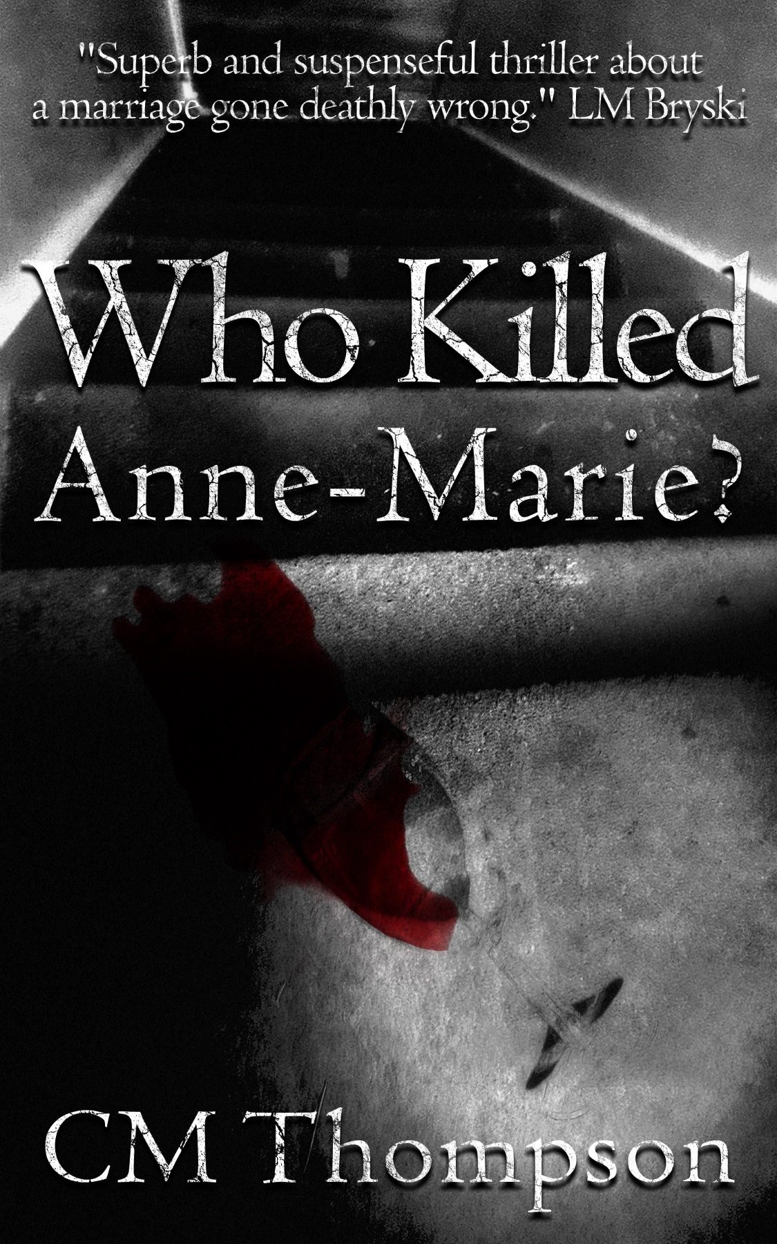 LB - Image - Book - Who Killed Anne Marie.jpg