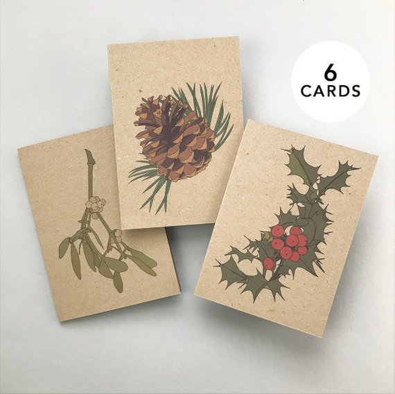 Christmas card set - eco friendly recycled illustrated cards, pack of 6, holly, pinecone and mistletoe.    £10.00