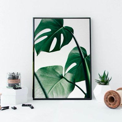 Monstera Leaf Print    £5.60