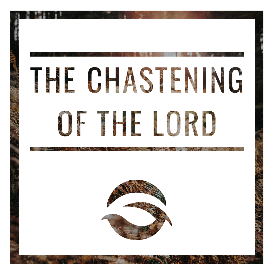 The Chastening of the Lord.jpg
