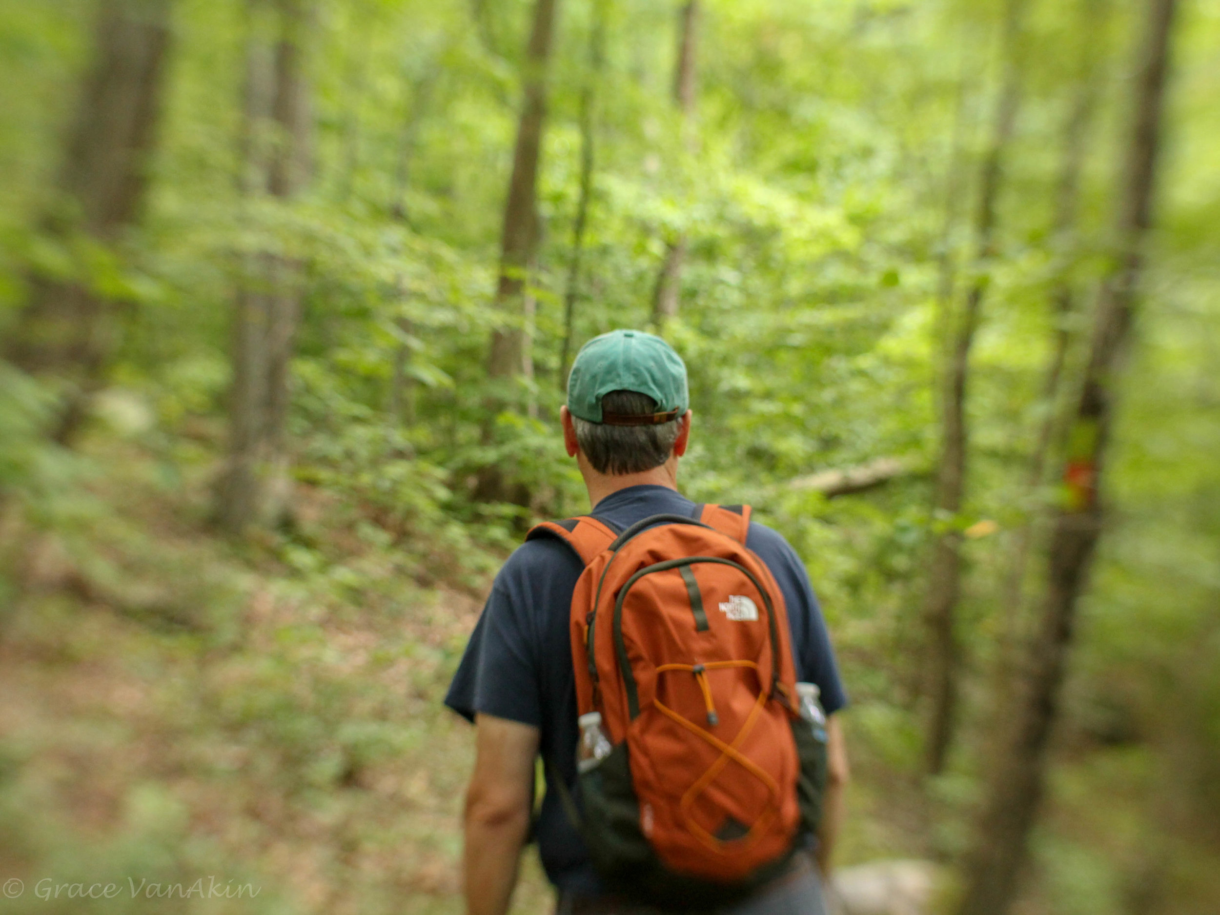 In every walk with nature one receives far more than he seeks. ~ John Muir