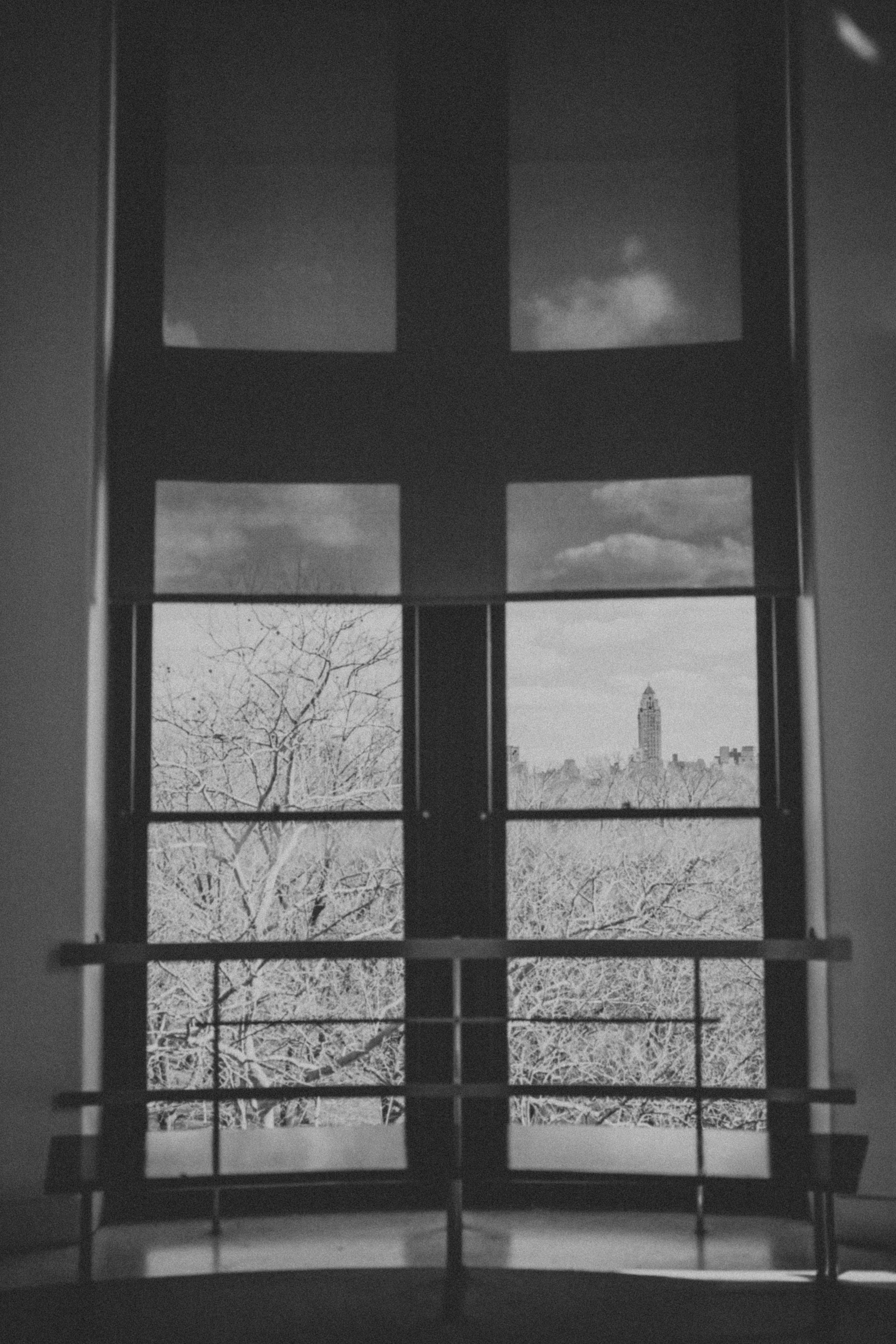 NYCMarch2019-46.jpg