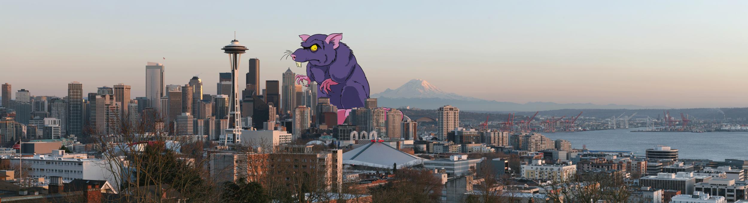Rat Overtaking Downtown Seattle