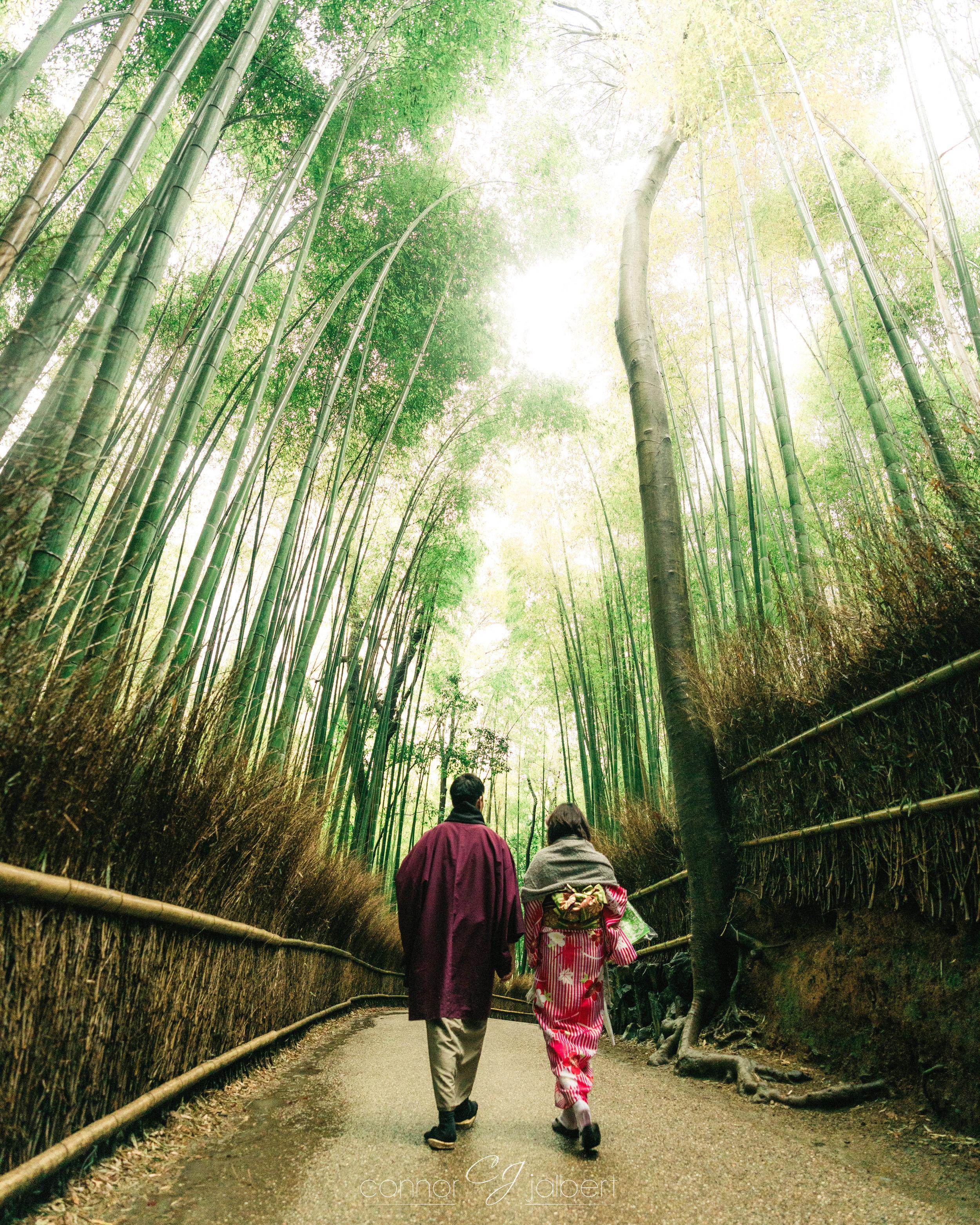 Arishiyama Bamboo Grove
