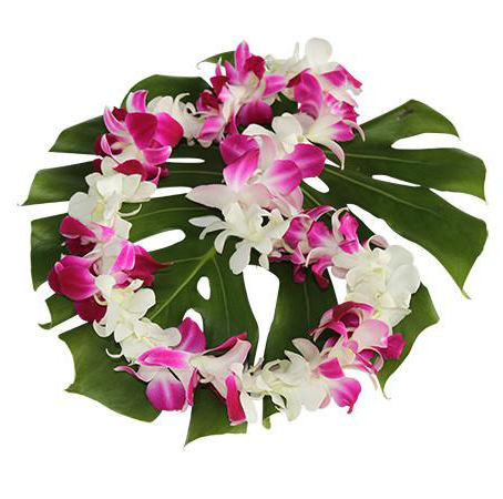 Middle_Orchid-Lei.jpg