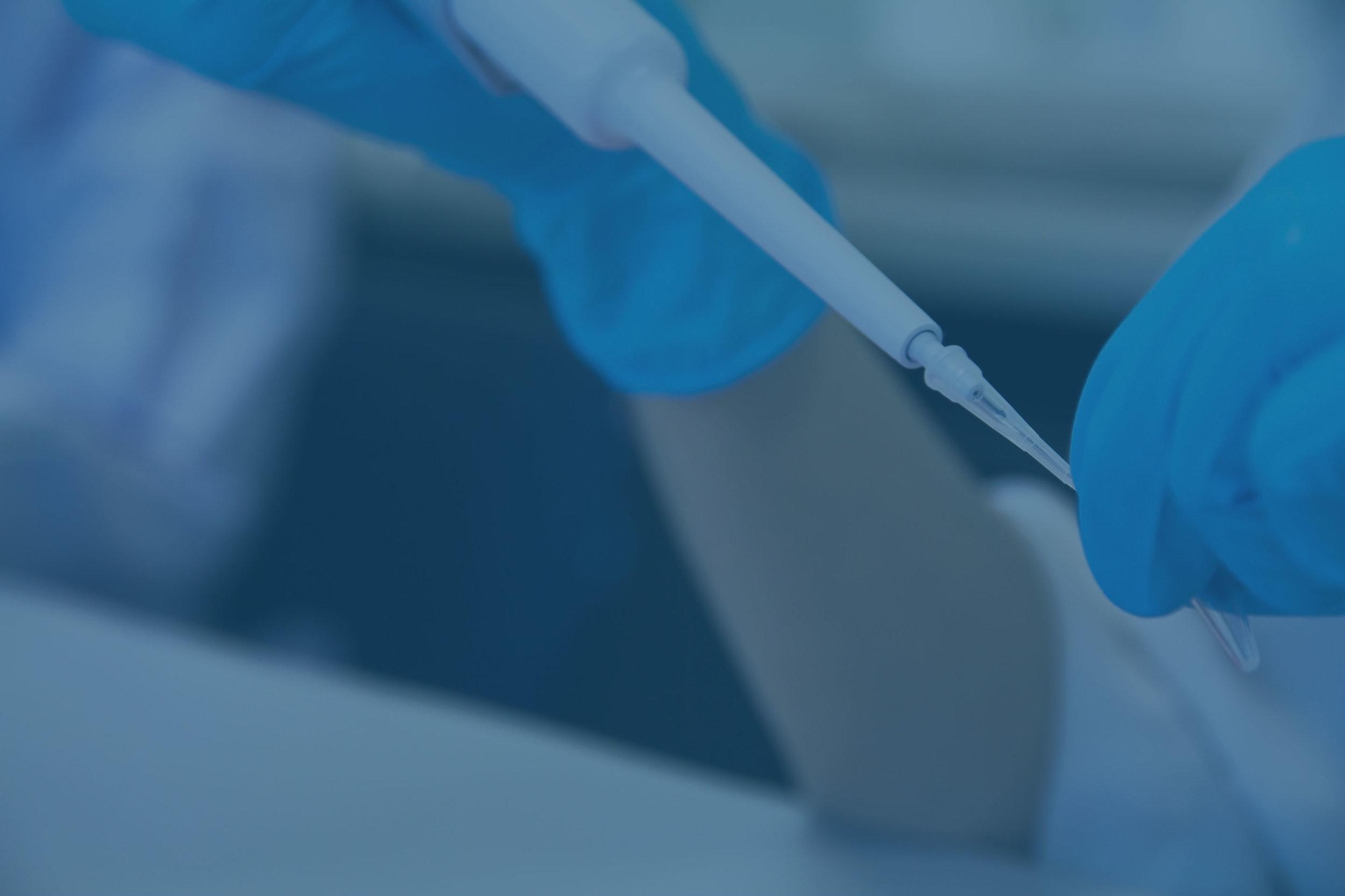 PCR2.jpg