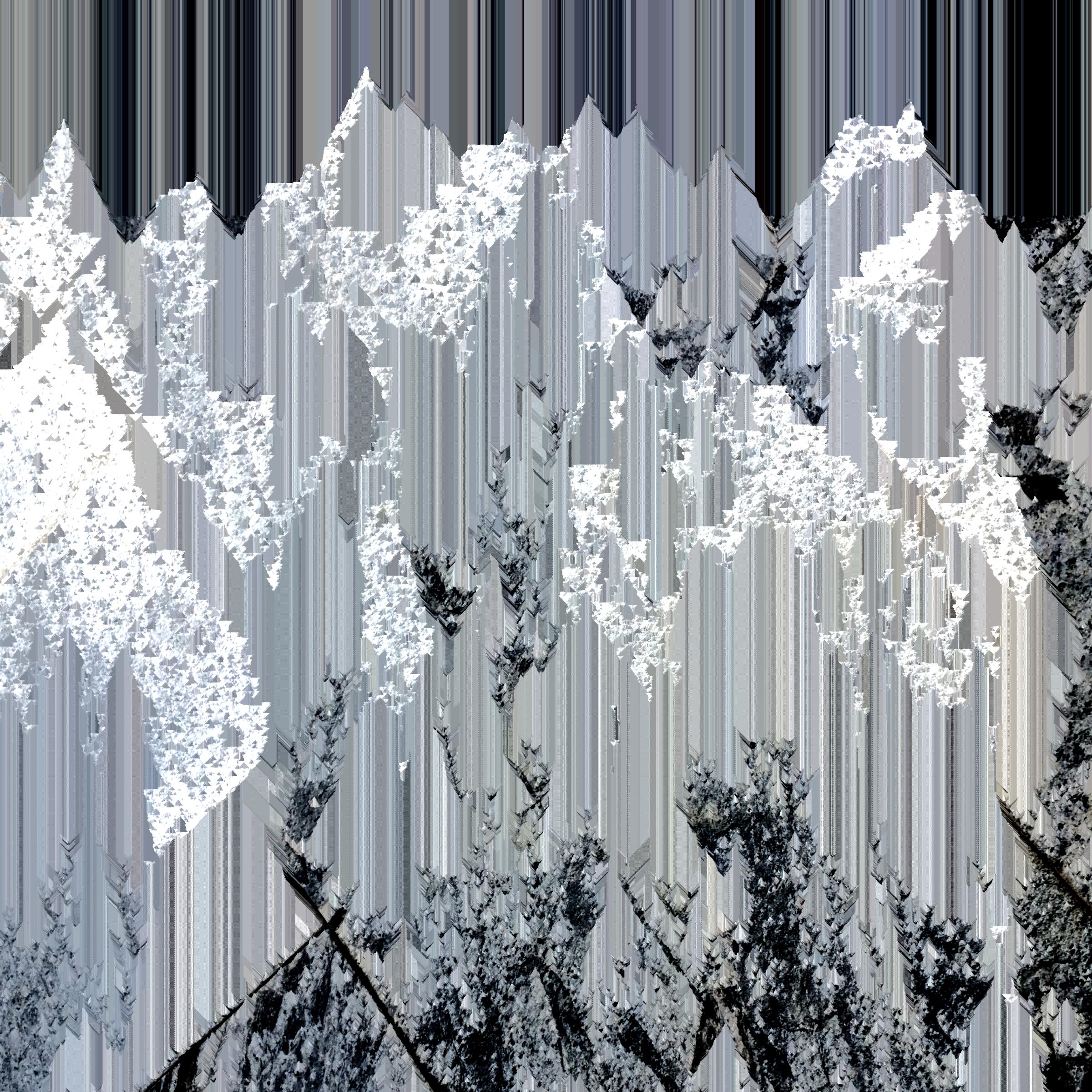 digital mountain.png