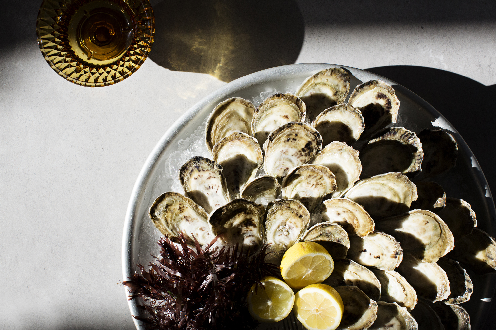A platter of oysters | Martina | The Restaurant Project