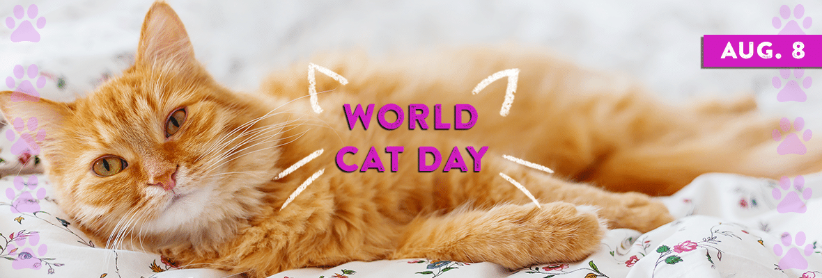 World-Cat-Day.png
