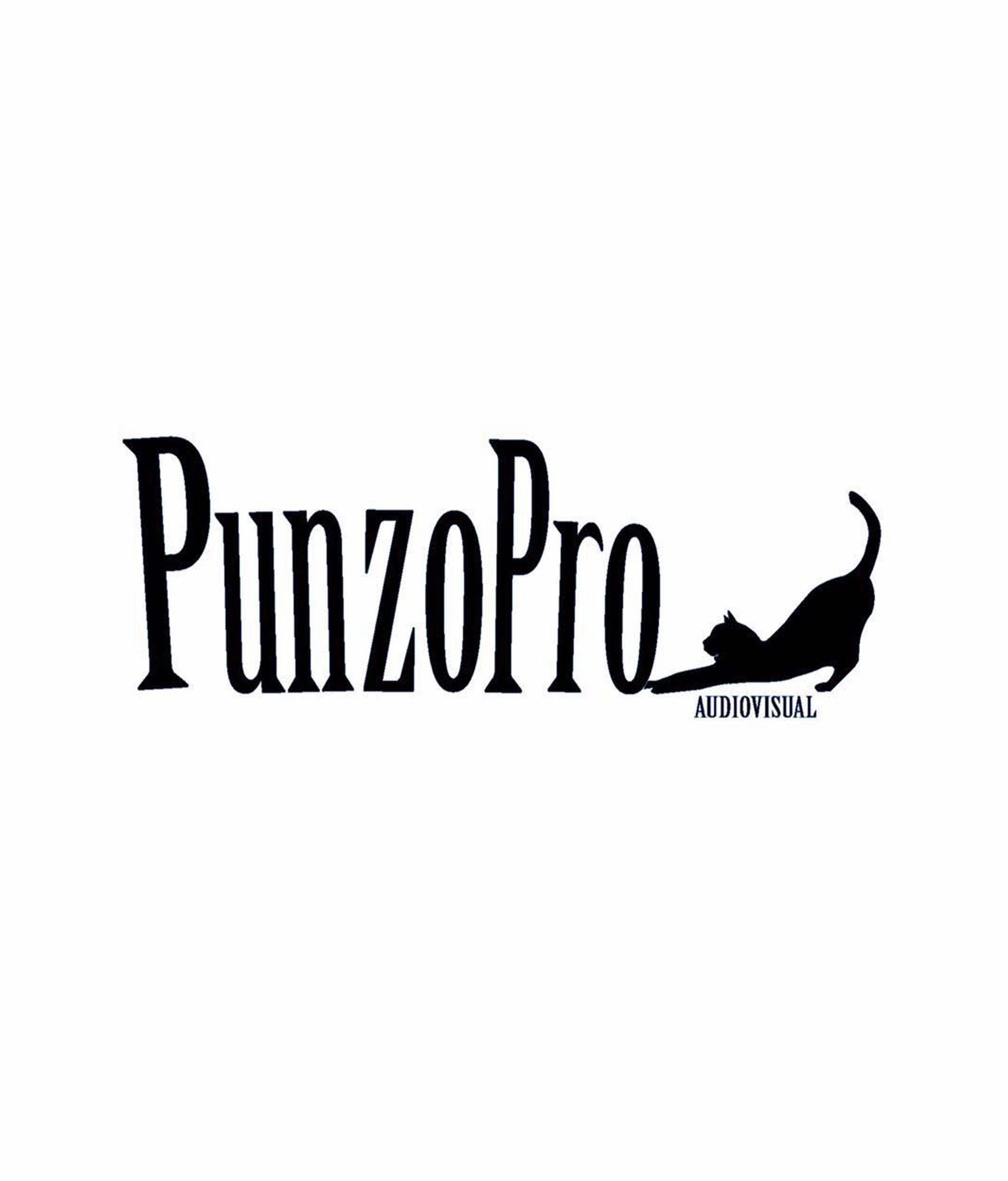 Punzo Pro