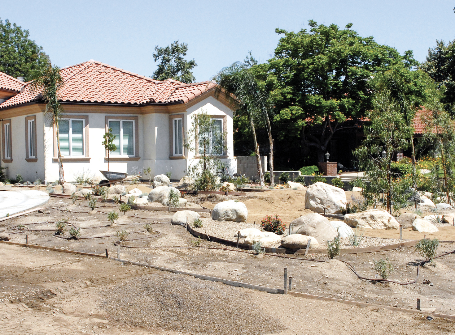 Continue irrigation work, place boulders and trees. Be sure to partially bury the boulders so their placement looks natural and not plopped in place.
