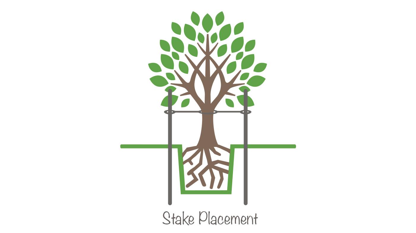 stake_18.jpg