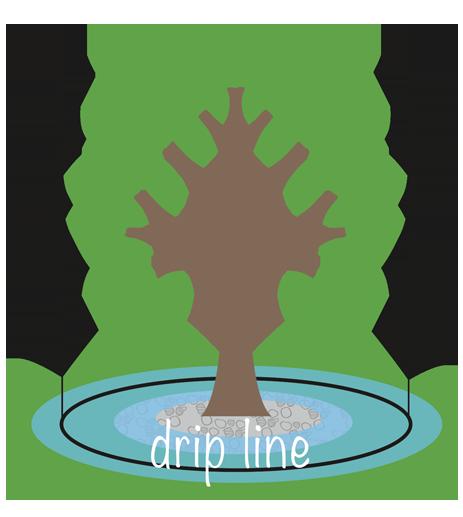 dripline.png