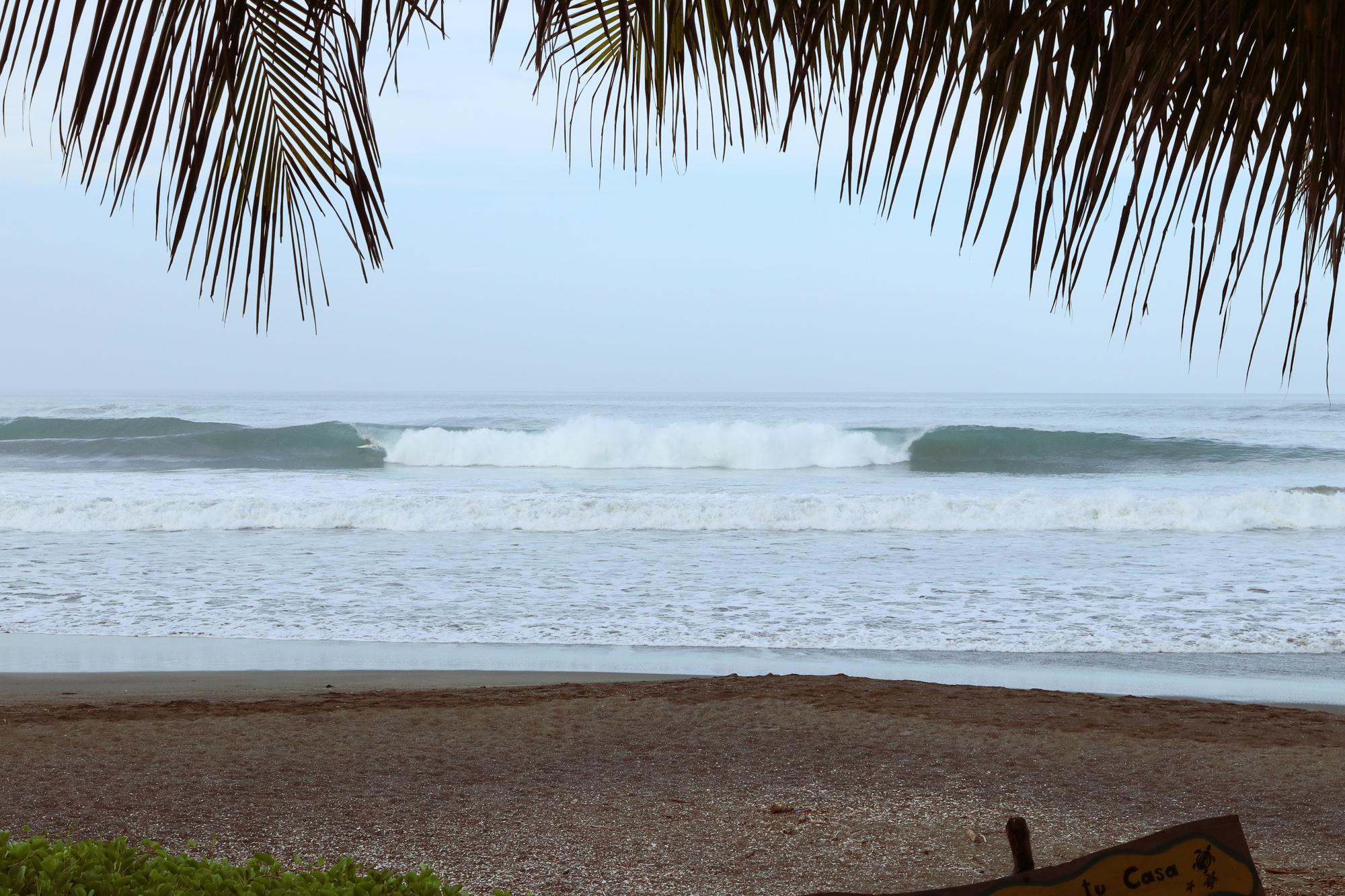 Costa Rica: August, 2019