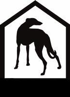 Greyhound Pet Adoption NW