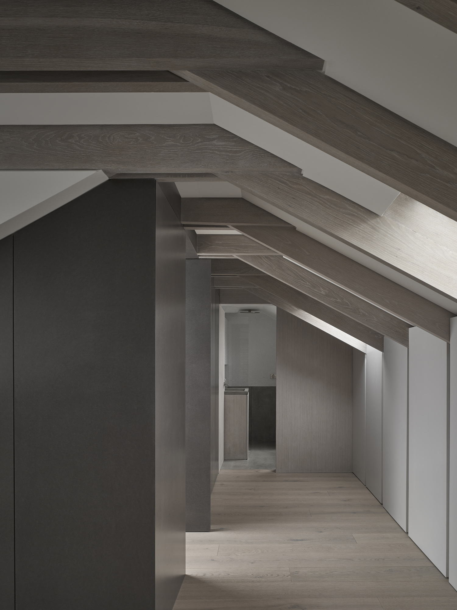 reveal in roof-con_form_architects_05.jpg