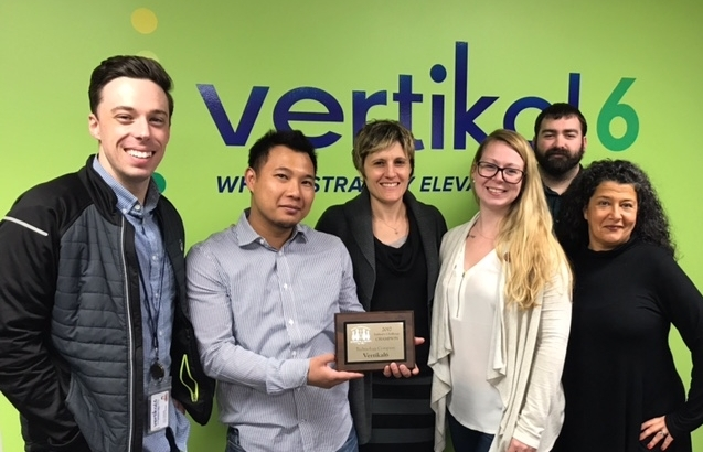 Technology Challenge winners, Verikal 6