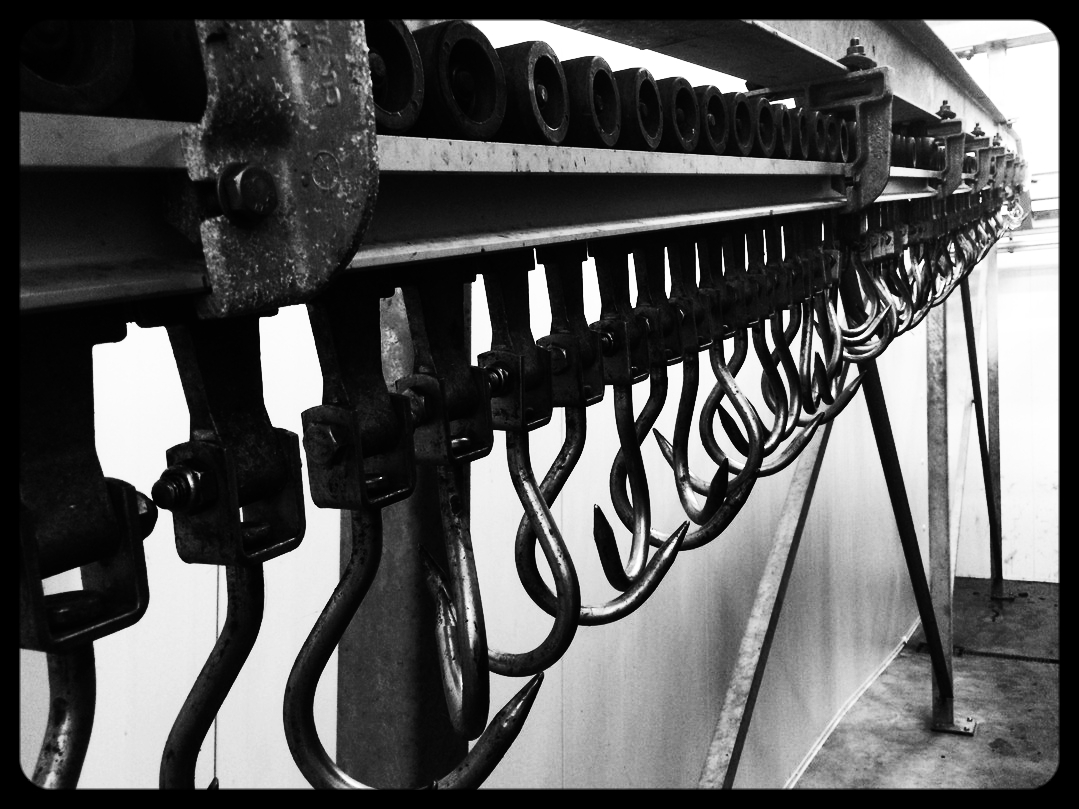 Rail of Hooks