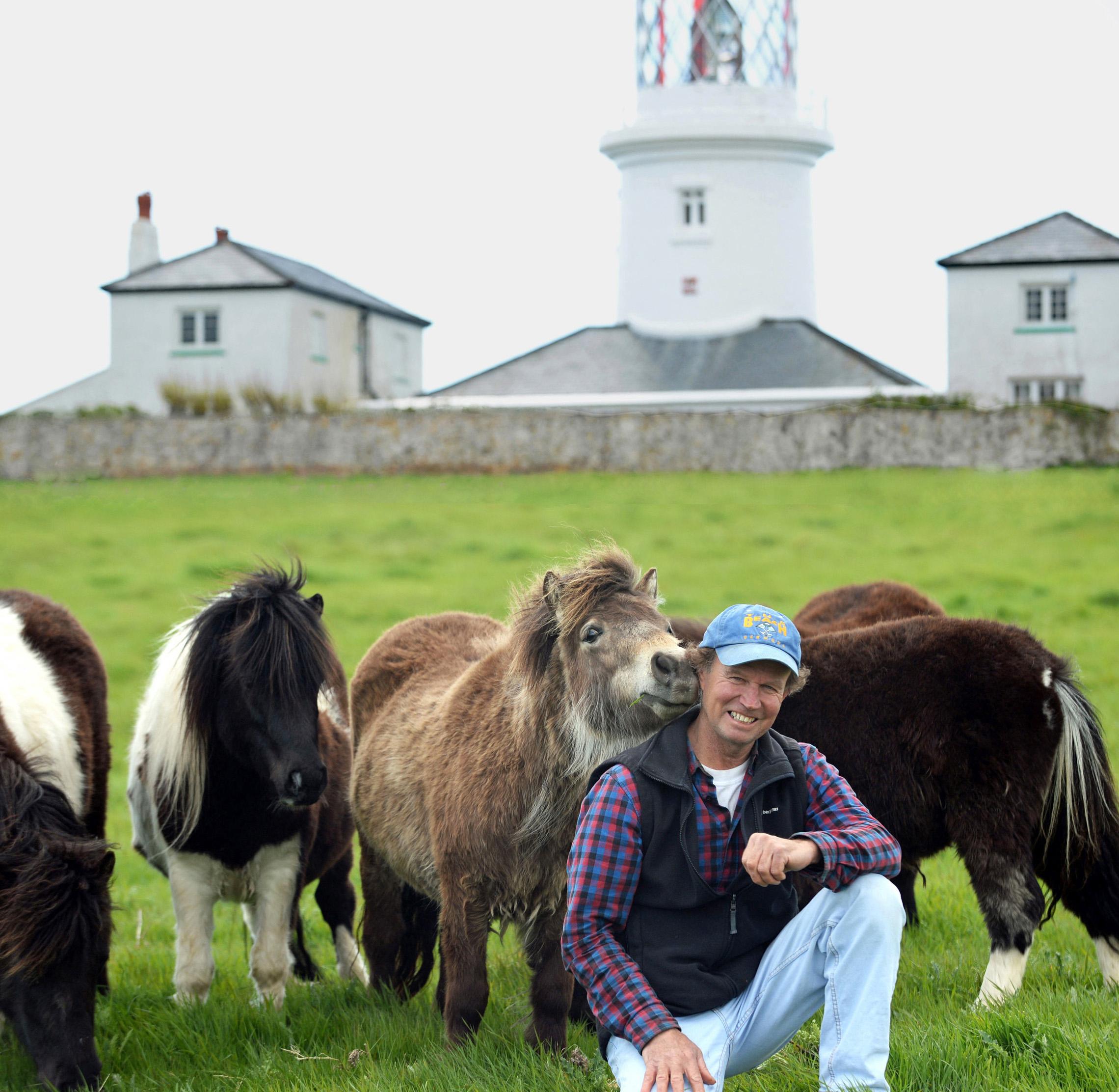 Caldey Island Shetland ponies copy.jpg