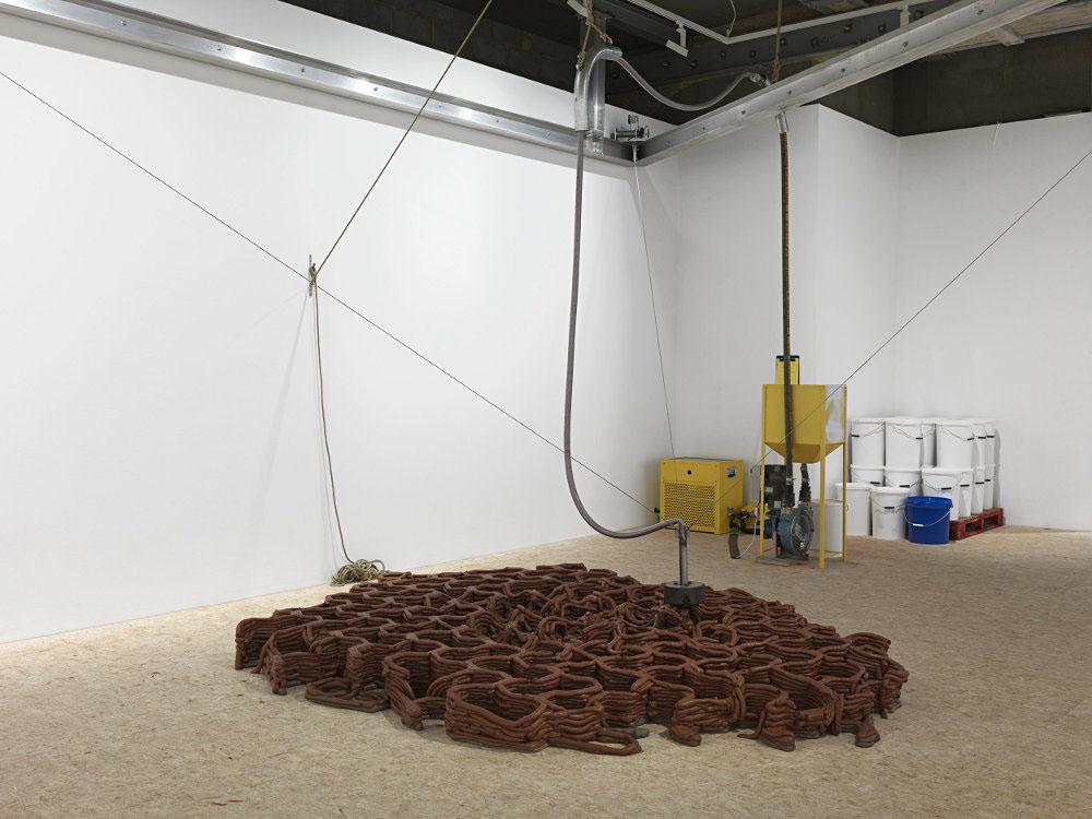 Anya Gallacio Thomas Dane Gallery