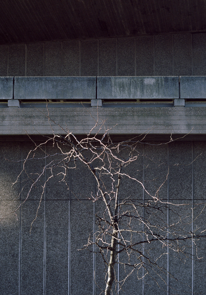 Architectural Photography of Rory Gardiner - Anniversary Magazine