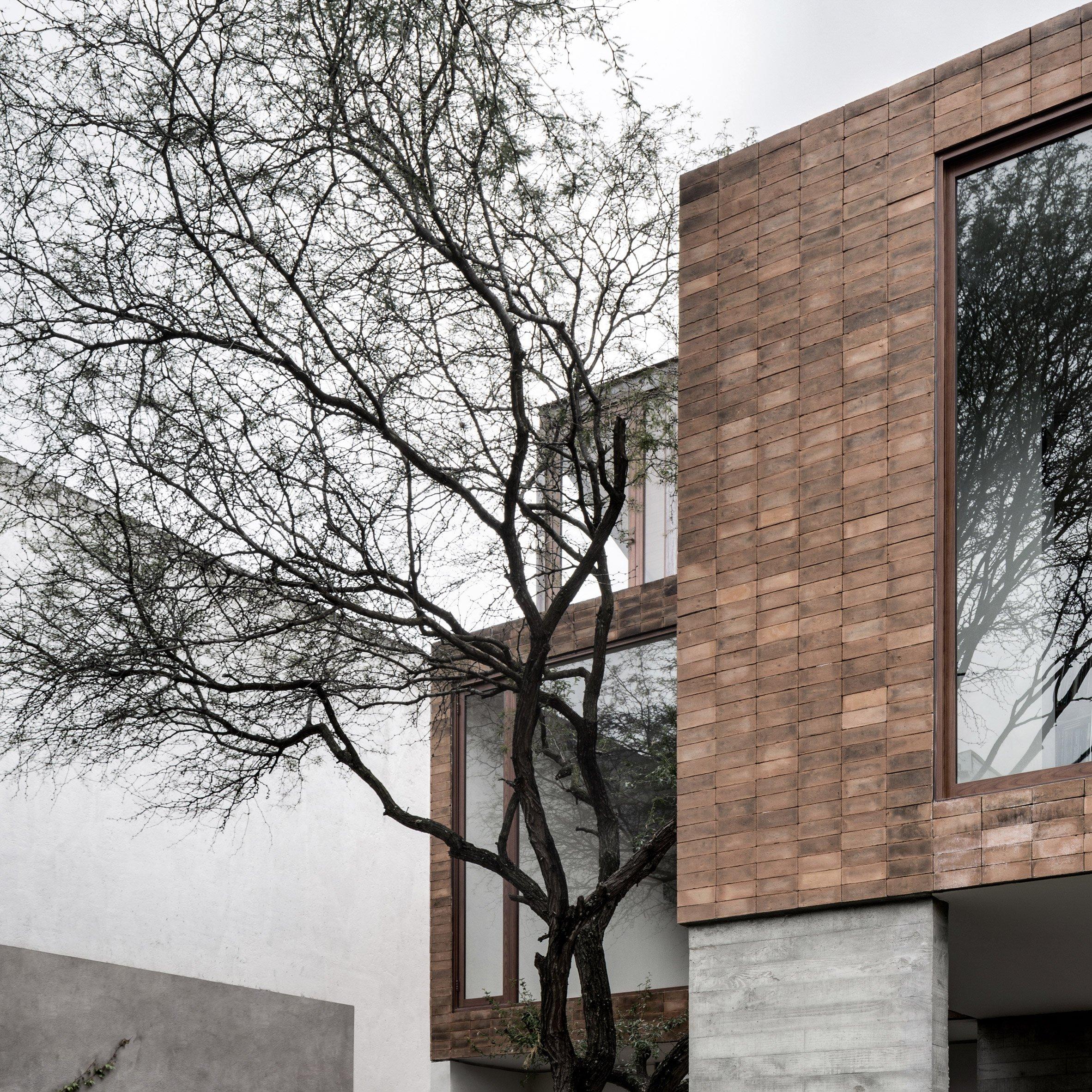 mezquites-house-asd-asociacion-diseno-architecture-residential-guanajuato-mexico-on-anniversary-magazine-