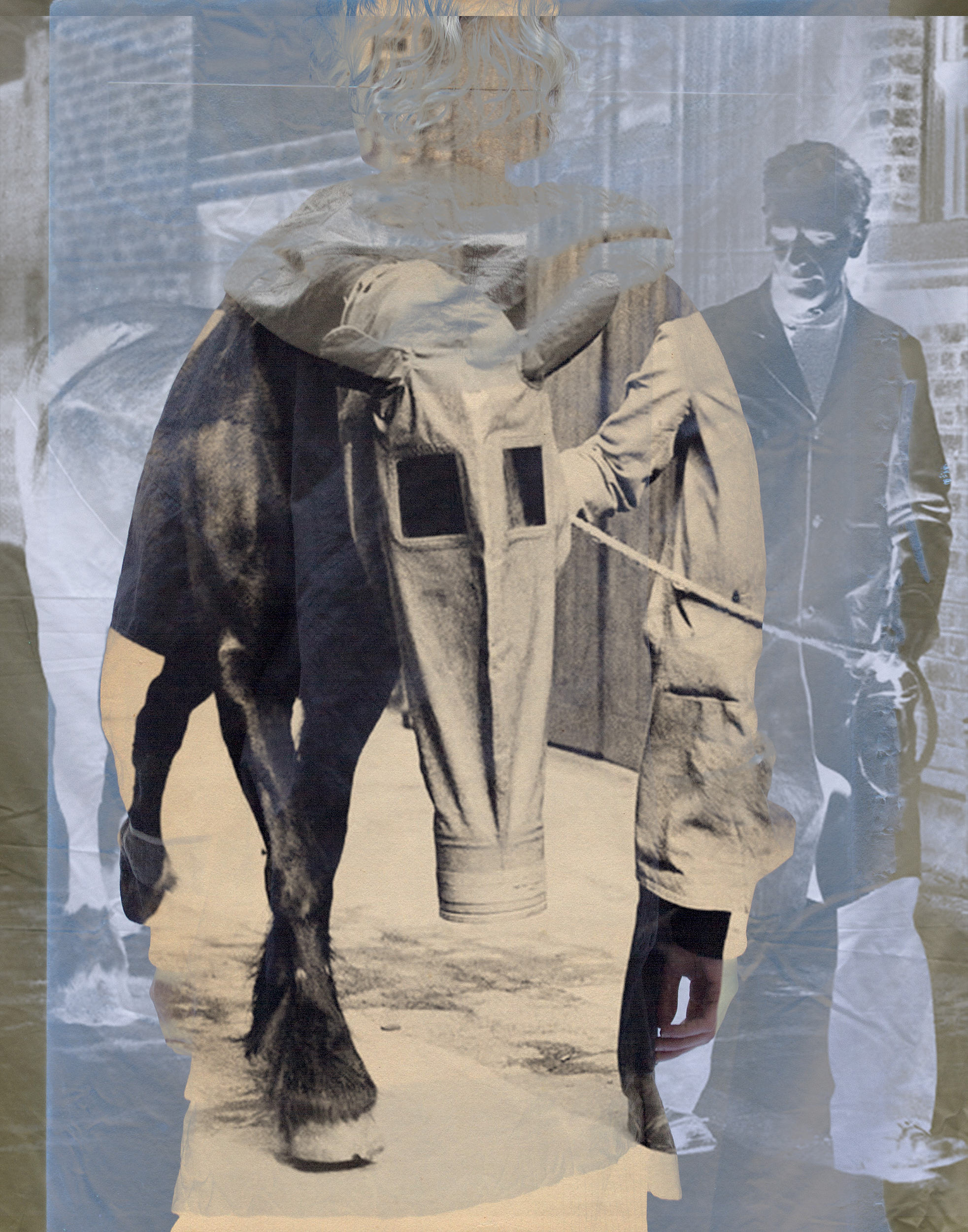 horse-Ziggy-Chen-on-Anniversary-Magazine.jpg