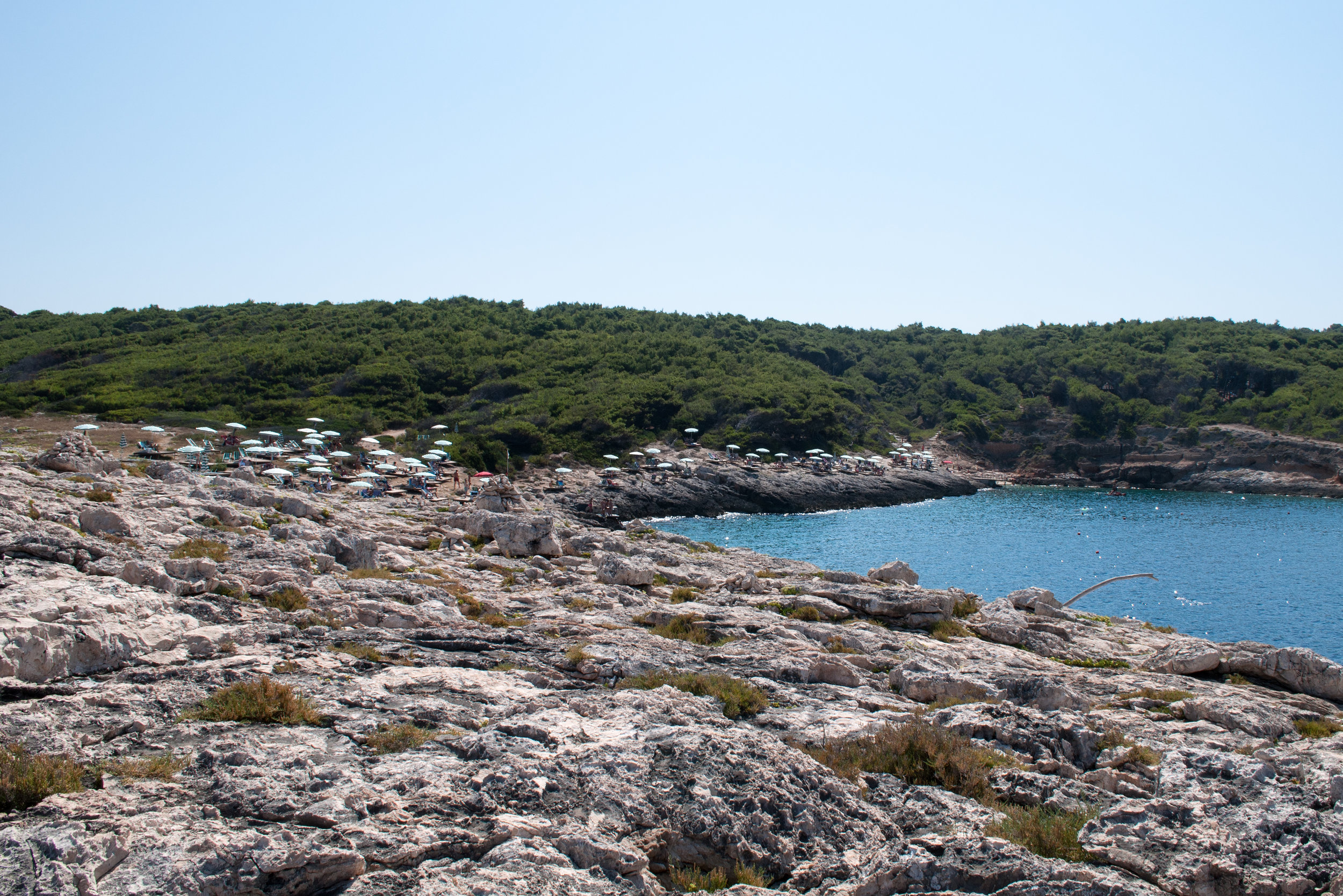 A long shot of a rocky island with lush trees in the distance.