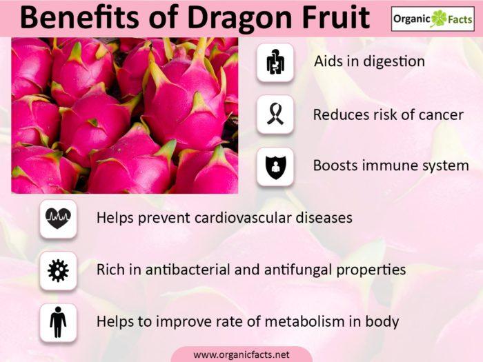 dragonfruitinfo-700x525.jpg