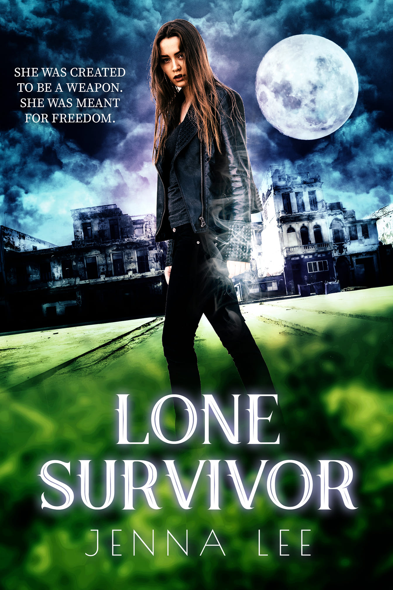 LONE SURVIVOR   Jenna Lee    Sadie was created in a lab - an experiment that scientists were supposed to get rid of on her eighteenth birthday. But a fire breaks out and she's the only survivor. Or is she?  Now, she's tracking other misfits like her before the secret government agency that created her can track them all down for themselves.