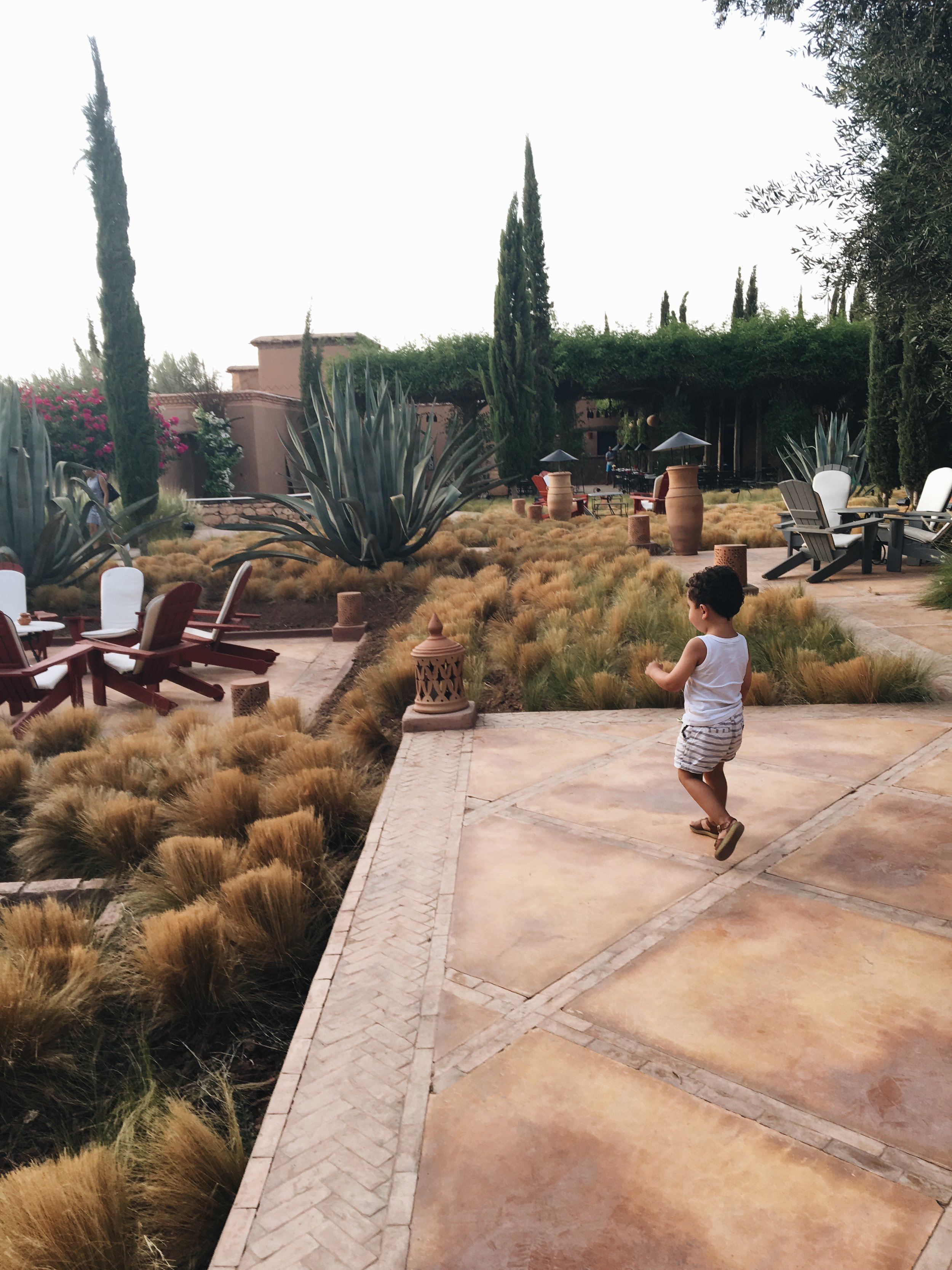 The Beldi Country Club restaurant gardens | Marrakech