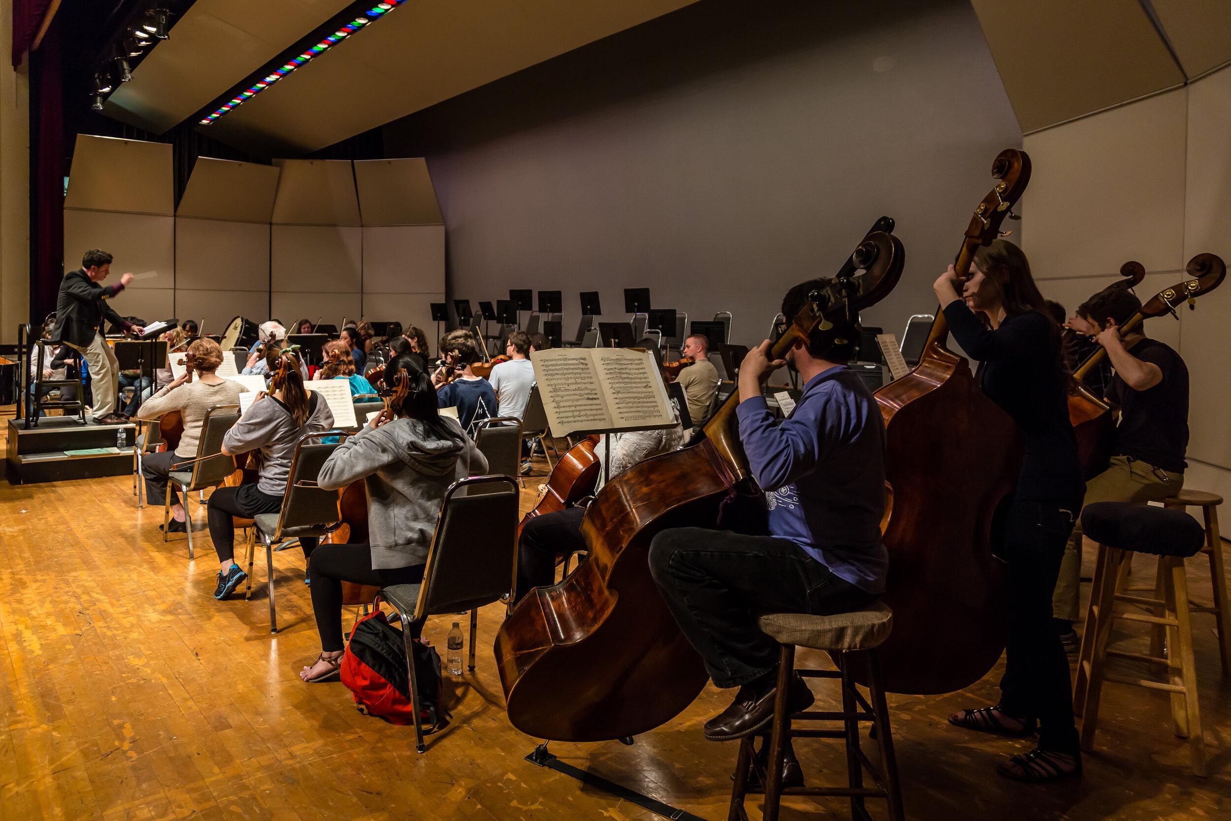 Danville Symphony Orchestra-0812.jpg