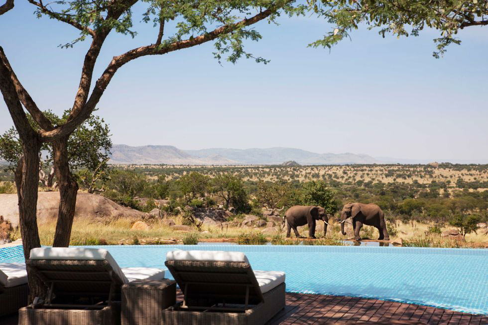 Town & Country |October 27, 2016   22 of the Most Stunning Hotel Pools In the World