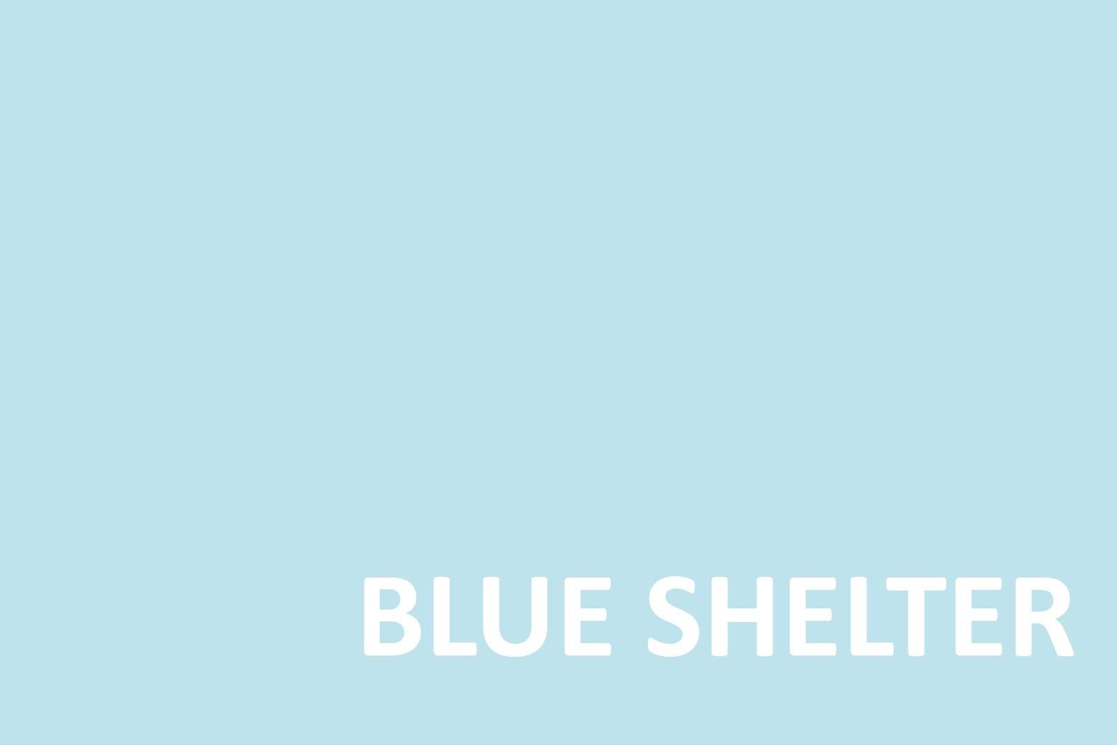 June - Blue Shelter.jpg