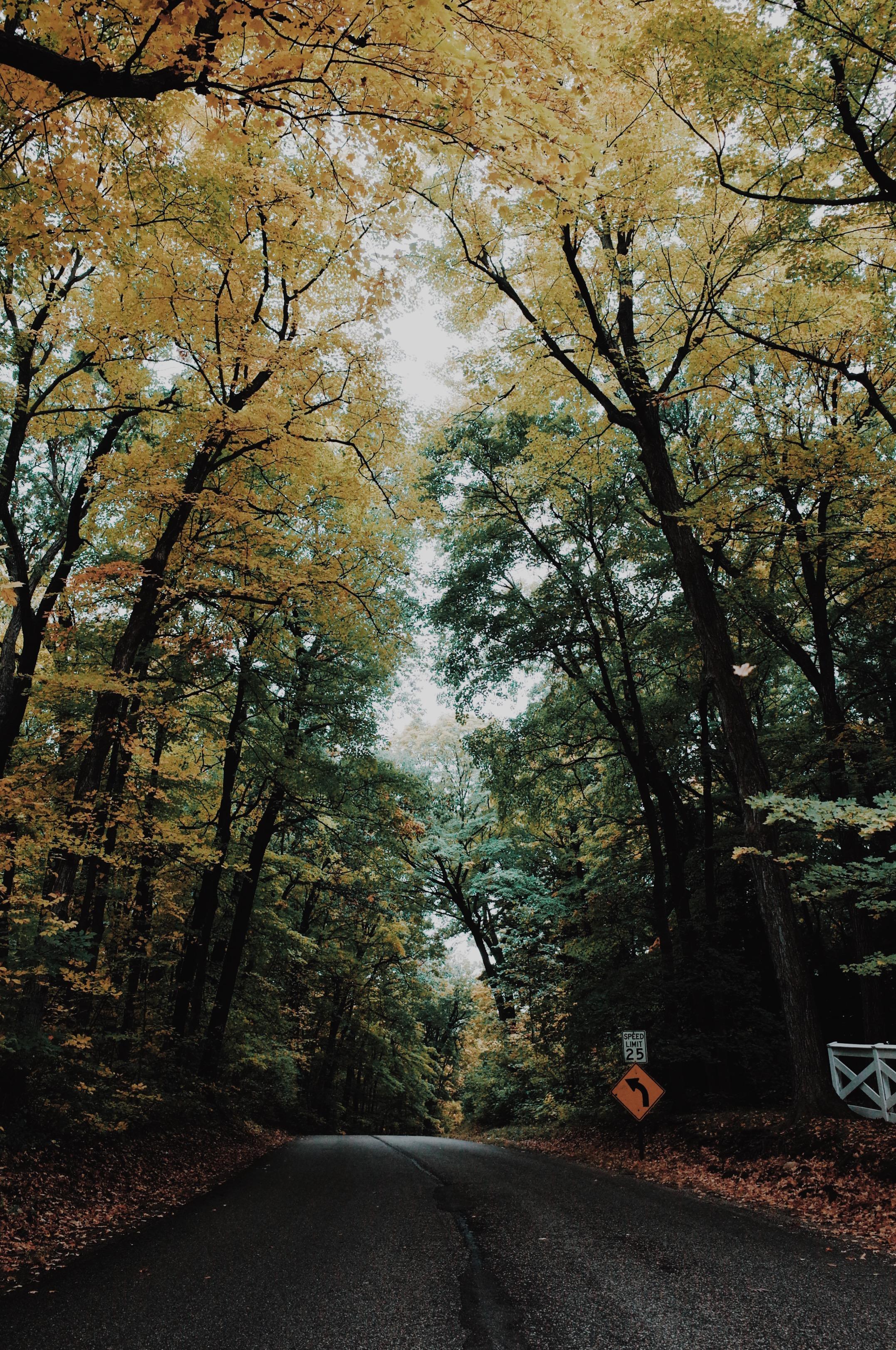 Photo Oct 15, 4 44 47 PM.jpg