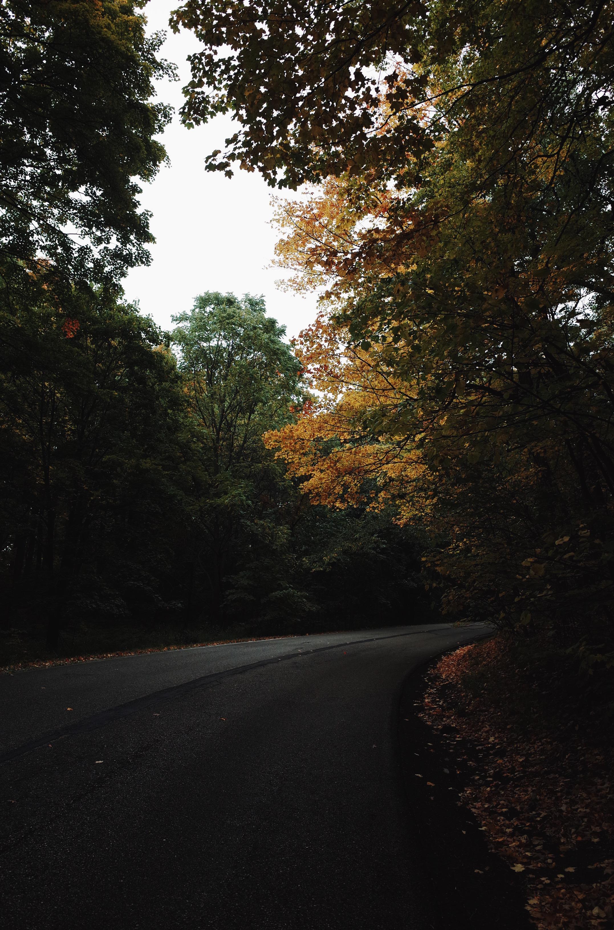 Photo Oct 15, 4 36 37 PM.jpg
