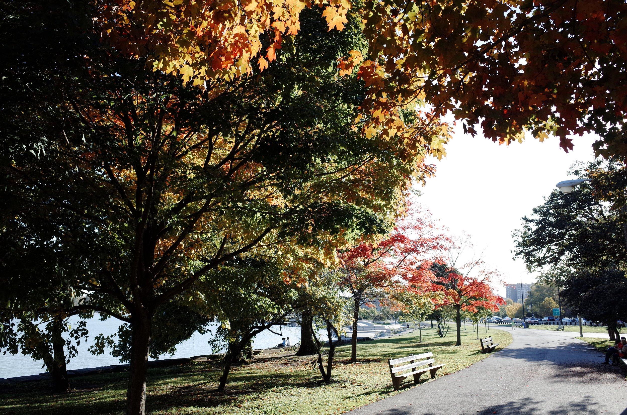 Photo Oct 10, 4 24 57 PM.jpg