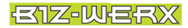 bizwerx logo.png