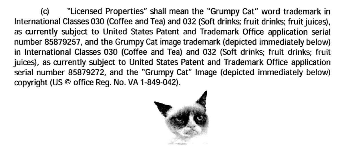 grumpy cat license.png
