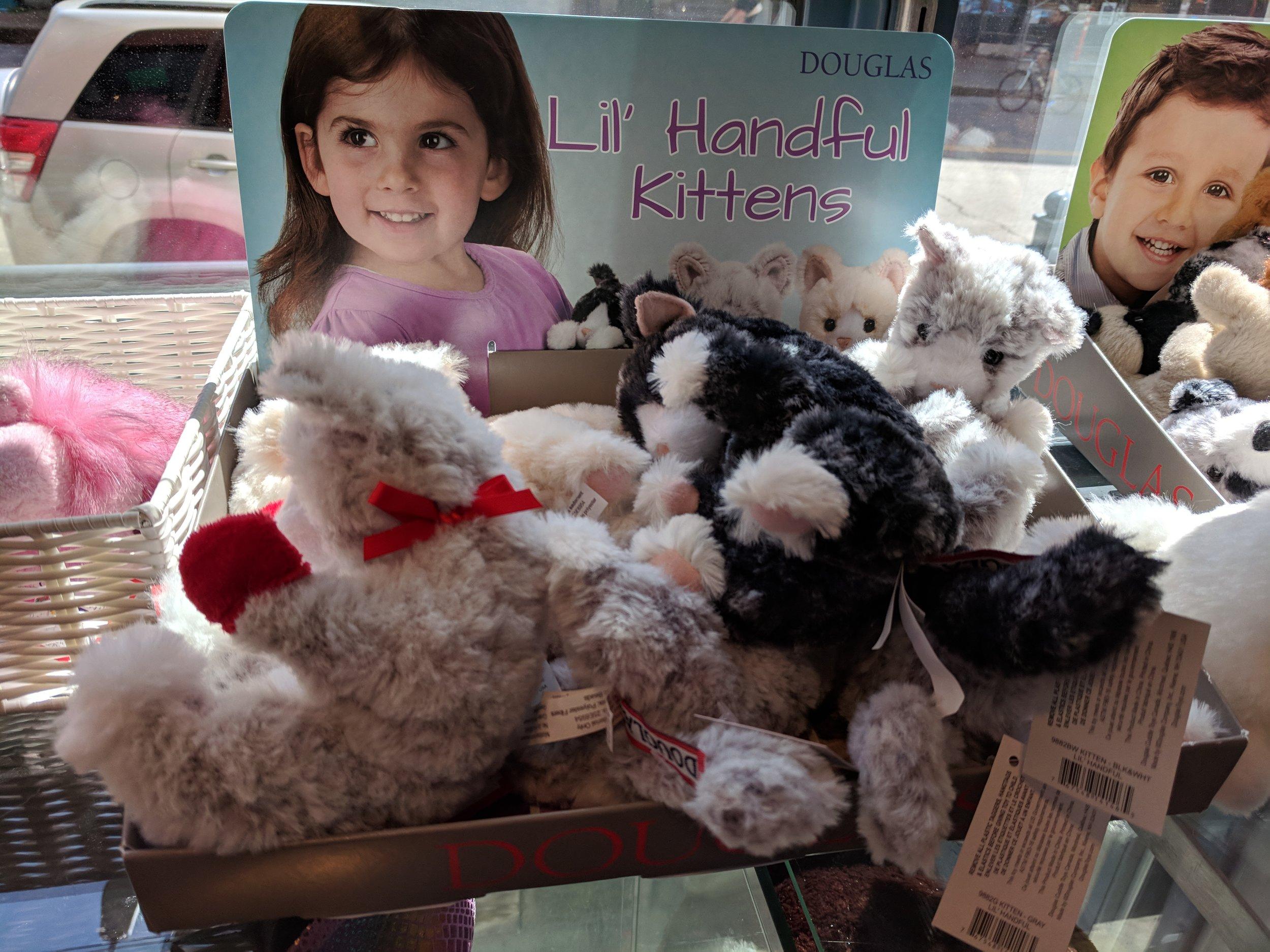 Kittens for girls