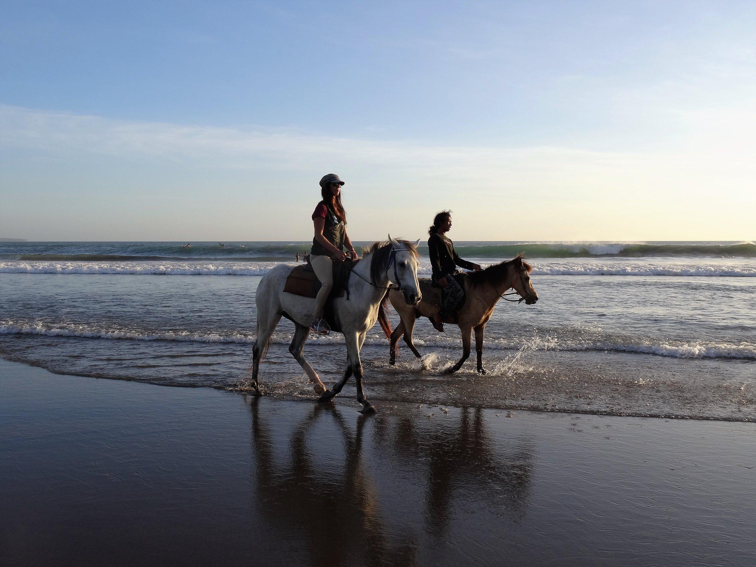 Randonnée à cheval -