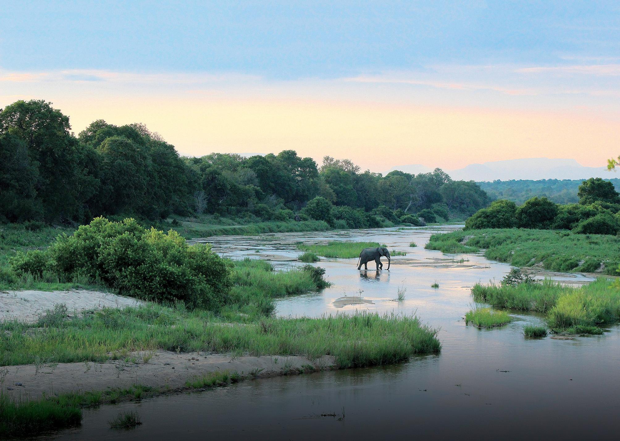 elephant-in-river-kiaraLEOPERD311.jpeg