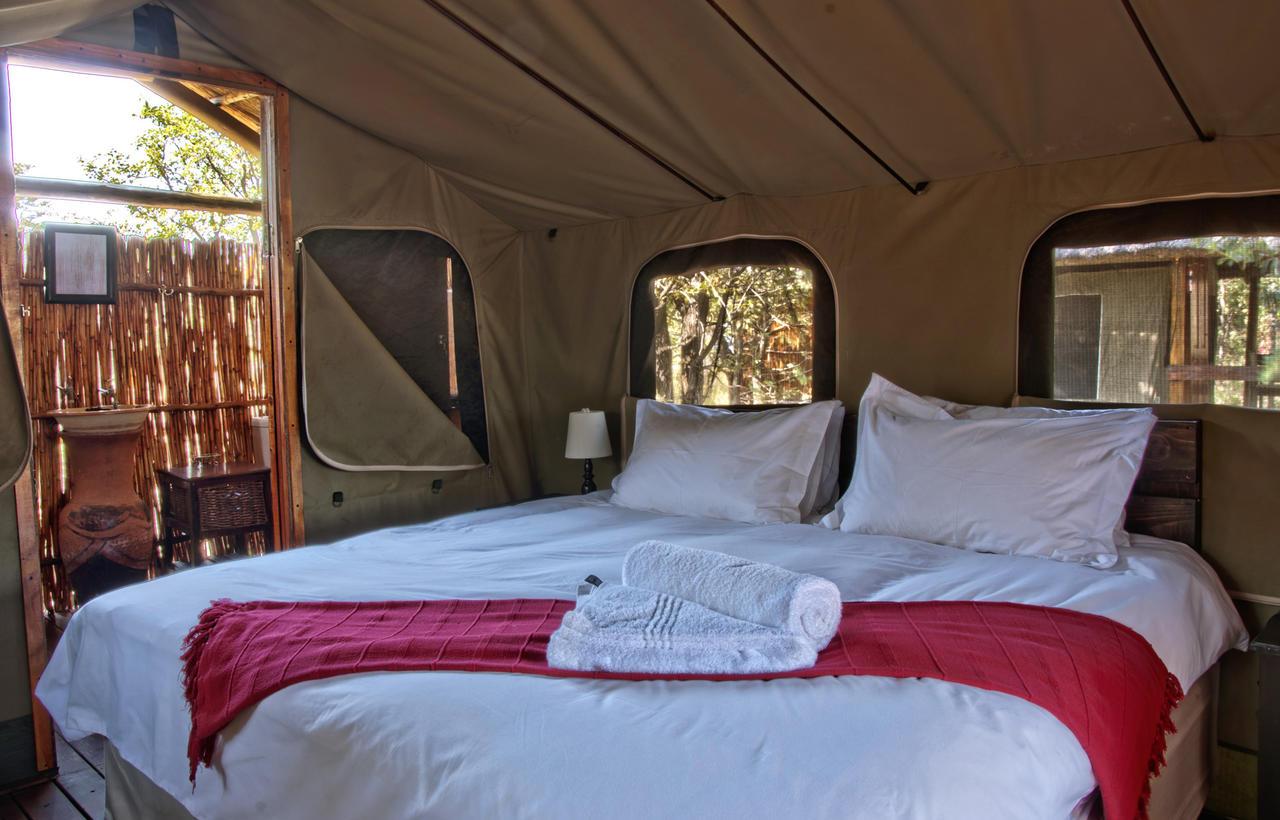 Double_safari_tent_at_Shindzela.jpeg