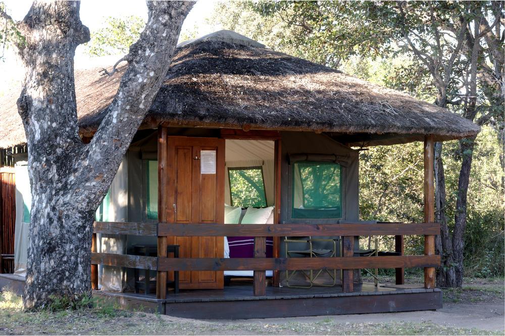 Exterior_view_of_Safari_tents_at_Shindzela2.jpeg