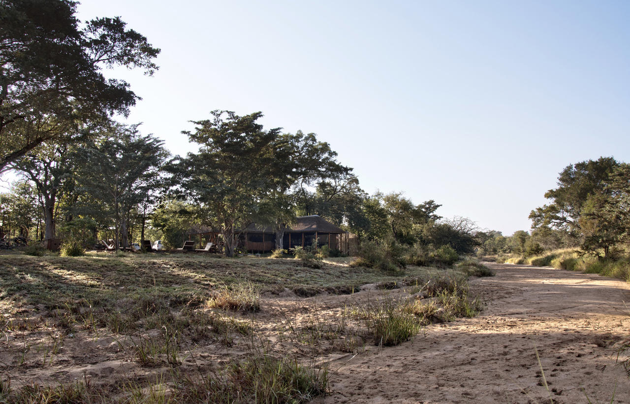 View_from_riverbed_towards_the_main_area_and_pool_area_of_Shindzela.jpeg